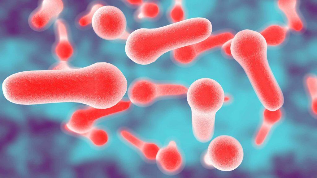 Tetanoz ve Tetanoz Aşısı